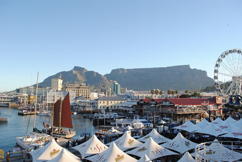 South-Africa-Table-Mountain-Port-Cape-Town-totalextrovert.com-mbti-enfp