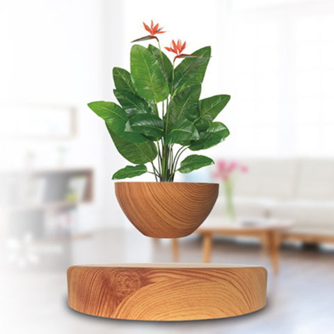 "Amazing Floating World 'Potted Plant"" -Suspended in Thin Air"