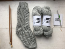 Load image into Gallery viewer, Pentland Sock BareFaced Knitting Kit
