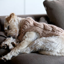 Load image into Gallery viewer, Oscar Dog Coat Knitting Pattern