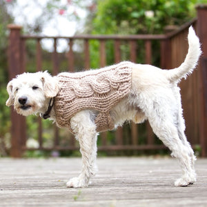Oscar Dog Coat Knitting Pattern