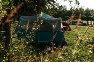 FOUR TENTS UNDER $65 DOLLARS