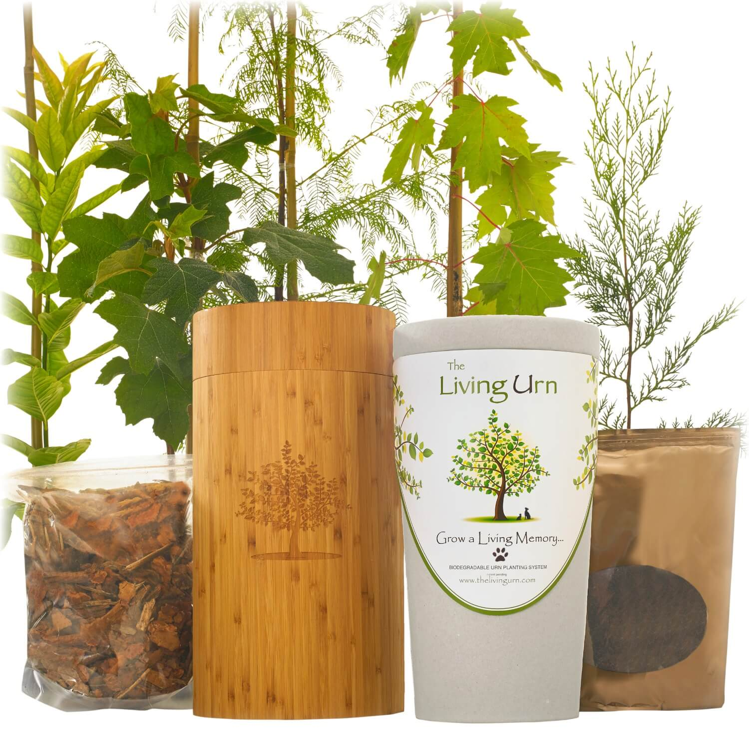 Living Urn System Only (use with your own tree, plant or flowers)
