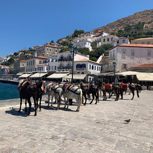 Traveling in Greece and savoring food like a local