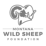 Montana Wild Sheep Foundation