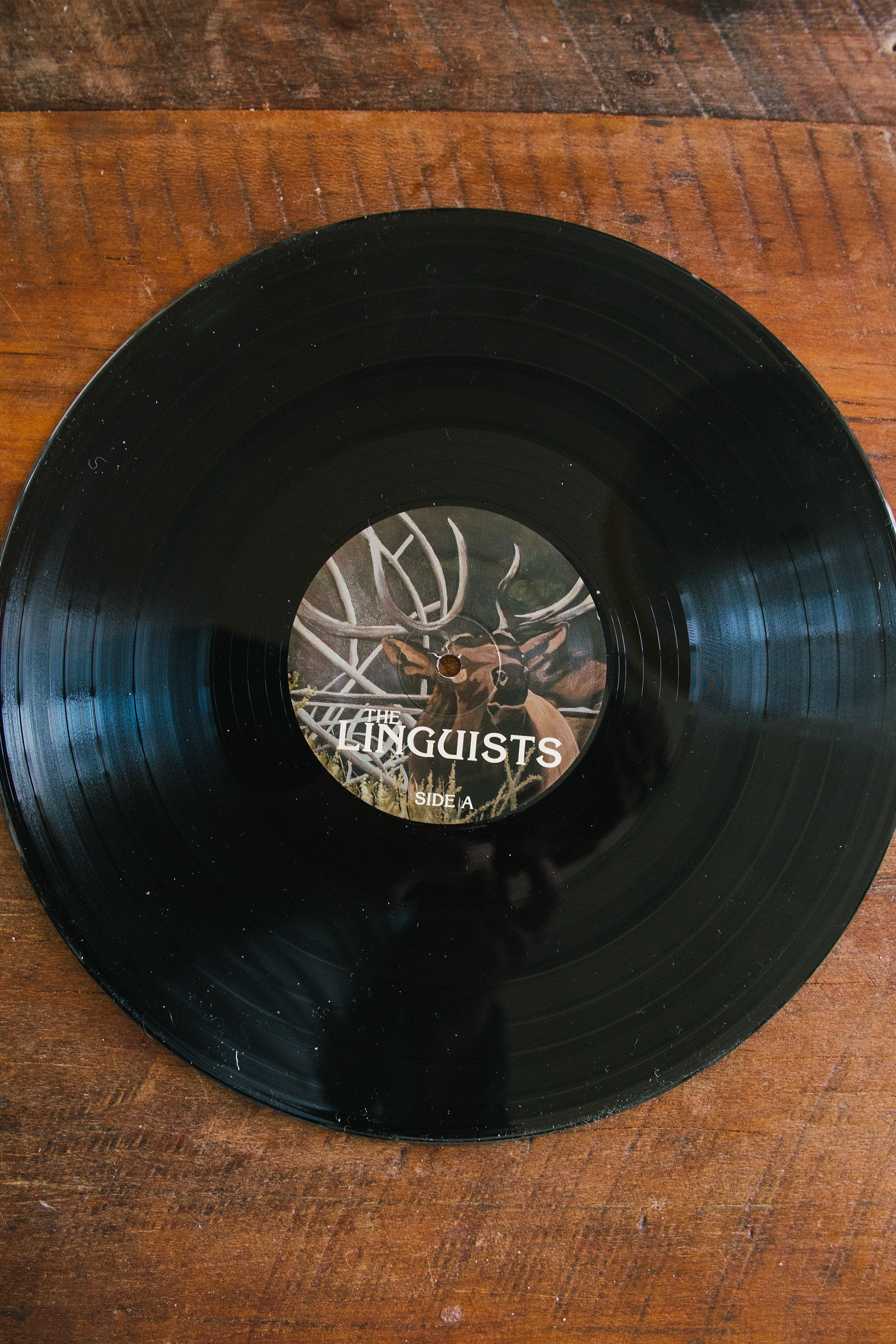 The Linguists Soundtrack - Vinyl Record