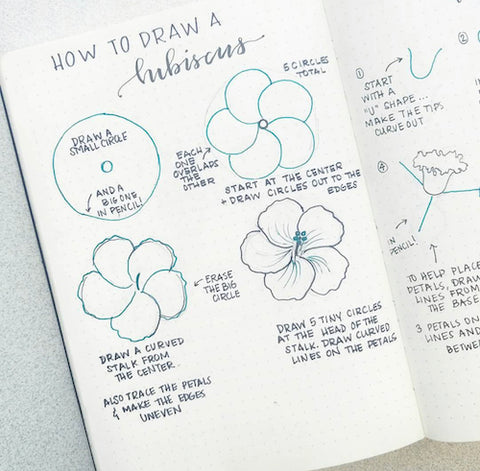 How to Draw a Hibiscus in Your Bullet Journal- Get your bullet journal ready for summer with these gorgeous summer bujo ideas! You have to see these inspiring summery trackers, layouts, covers, and more! | #bulletJournal #bujo #bujoIdeas #bujoInspiration #DigitalDownloadShop