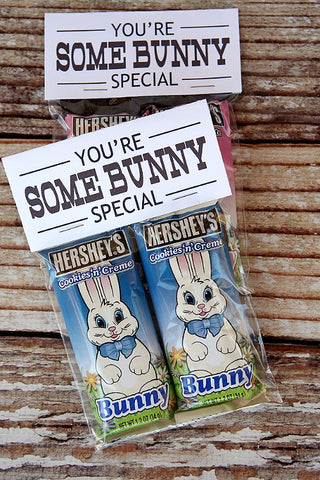 Somebunny Special Easter Treat Bag Toppers Free Printable- Make your Easter favors and candy gifts look egg-stra cute this year with some of these adorable free printable Easter treat bag toppers! | Easter party favors, Easter printable, #freePrintables #printable #Easter #treatBags #DigitalDownloadShop