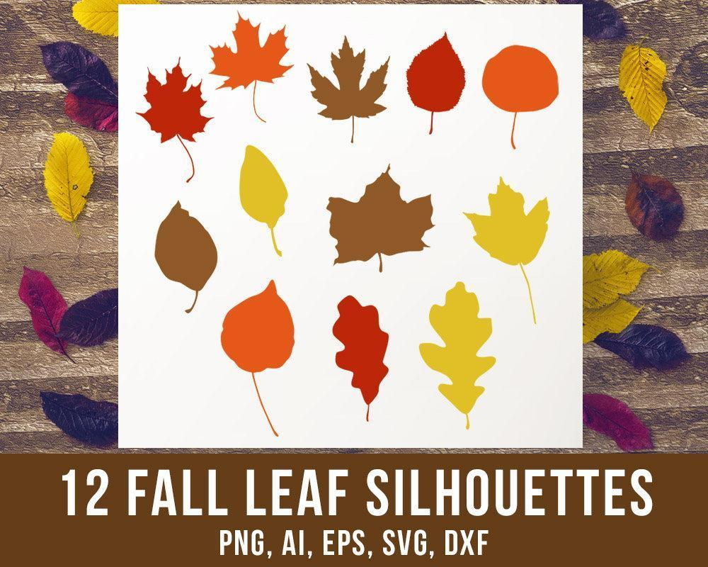12 Fall Leaves Clipart - The Digital Download Shop