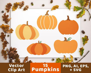 15 Pumpkins Clipart - The Digital Download Shop