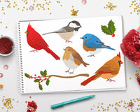 Winter Birds Clipart - The Digital Download Shop
