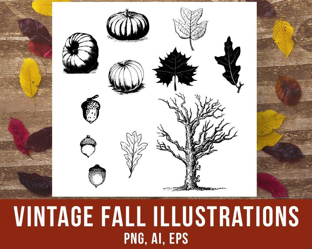 Vintage Fall Clipart - The Digital Download Shop