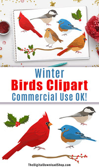 10 winter birds clipart images for personal and commercial use! This holiday clipart set includes 10 winter graphics (5 birds + 5 foliage pieces) in a detailed, realistic style. These would be lovely in wall art printables, scrapbooking projects, homemade Christmas cards, and more! | graphic design, holiday, cardinal, bluebird, #clipart #birds #DigitalDownloadShop