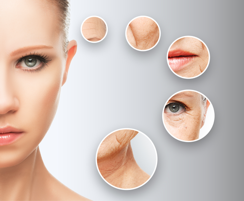 Age Reverse System- includes C-Stem Concentrated anti-aging serum, Antioxidant Lipochroman and Chamomile Facial Cleanser