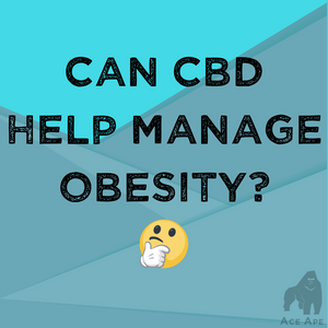 CBD vs Obesity & Metabolism