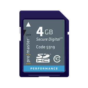 PRO SD CARD PERFORMANCE - 4GB (163X 24R/17W)(2117)
