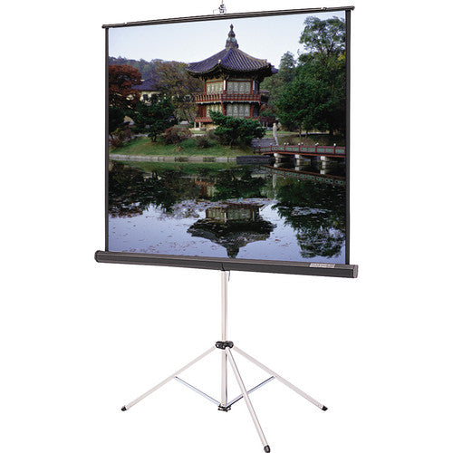 70x70 Screen with Stand Rental Orem