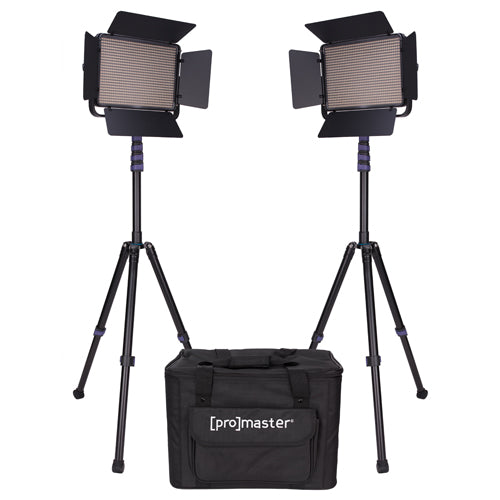 Pro LED1000D 2-Light Video LED Kit - Provo