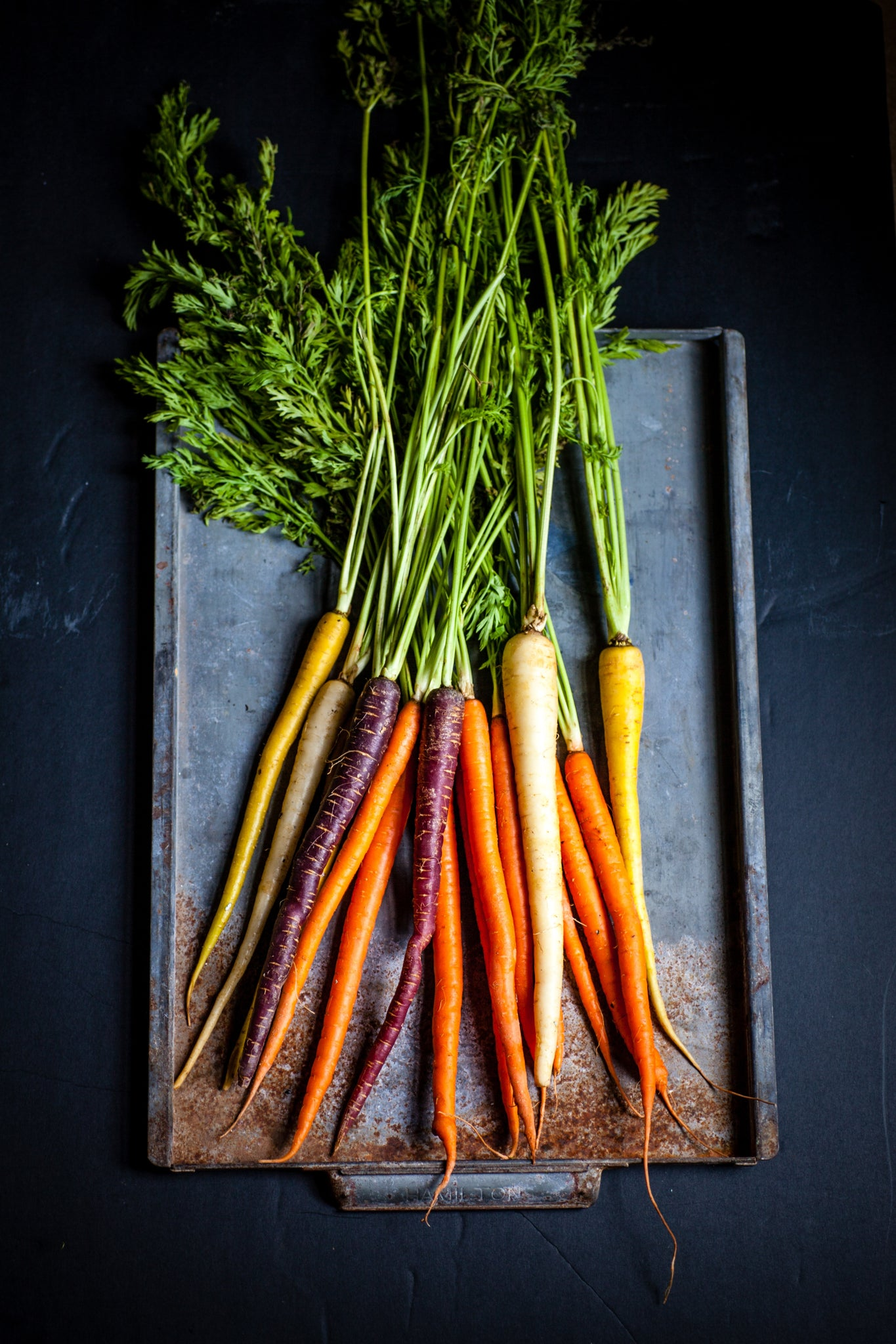 The benefits of carrot seed oil for the skin
