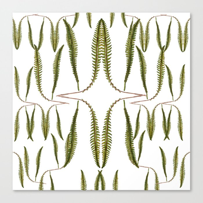 Fern - Cotton Tea Towel