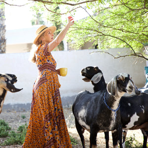 So You Want To Have Goats