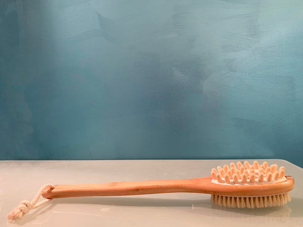 Long Handled Body Brush
