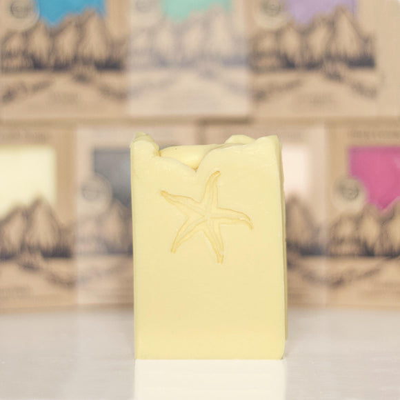 STARFISH <p><h6><I>Tropical pineapple & sweet peppermint</i></h6></p> - Rock Creek Soaps