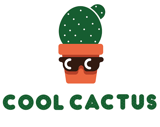 Cool Cactus Indoor Plants Pots Cool Things
