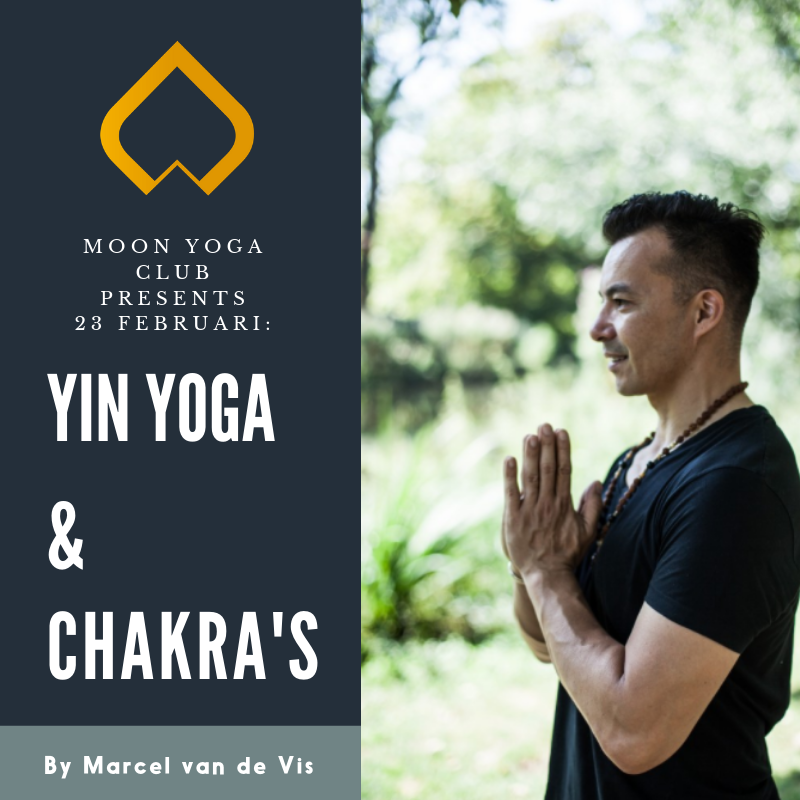 23 februari: Workshop Yin Yoga & Chakra's by Marcel van de Vis