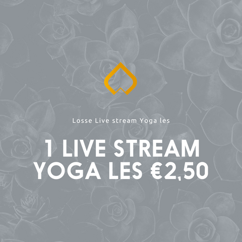 Losse live stream les