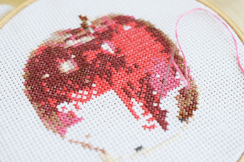 an apple a day cross stitch pattern finished result