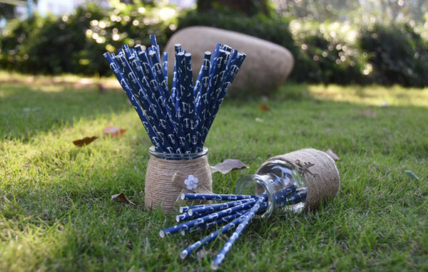 Anchor Paper Straws - 25 Pieces