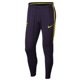 Nike Official 2017/18 Tottenham Hotspurs Dry Squad Pants 896515-528 Purple/Yellow
