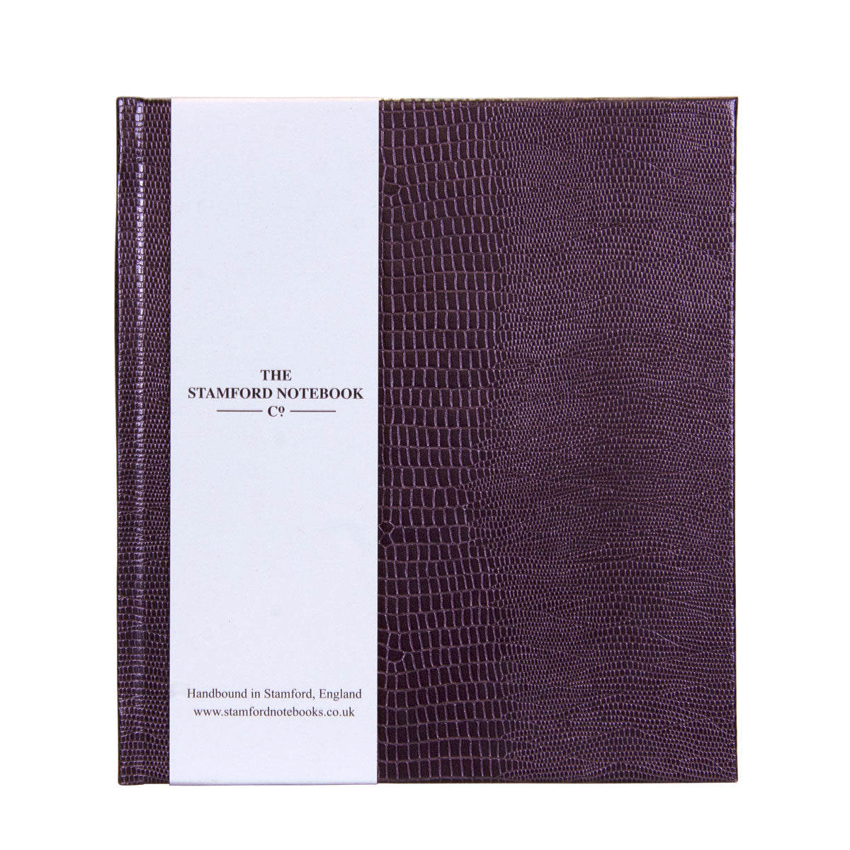 beetle wing iguana embossed handbound notebook