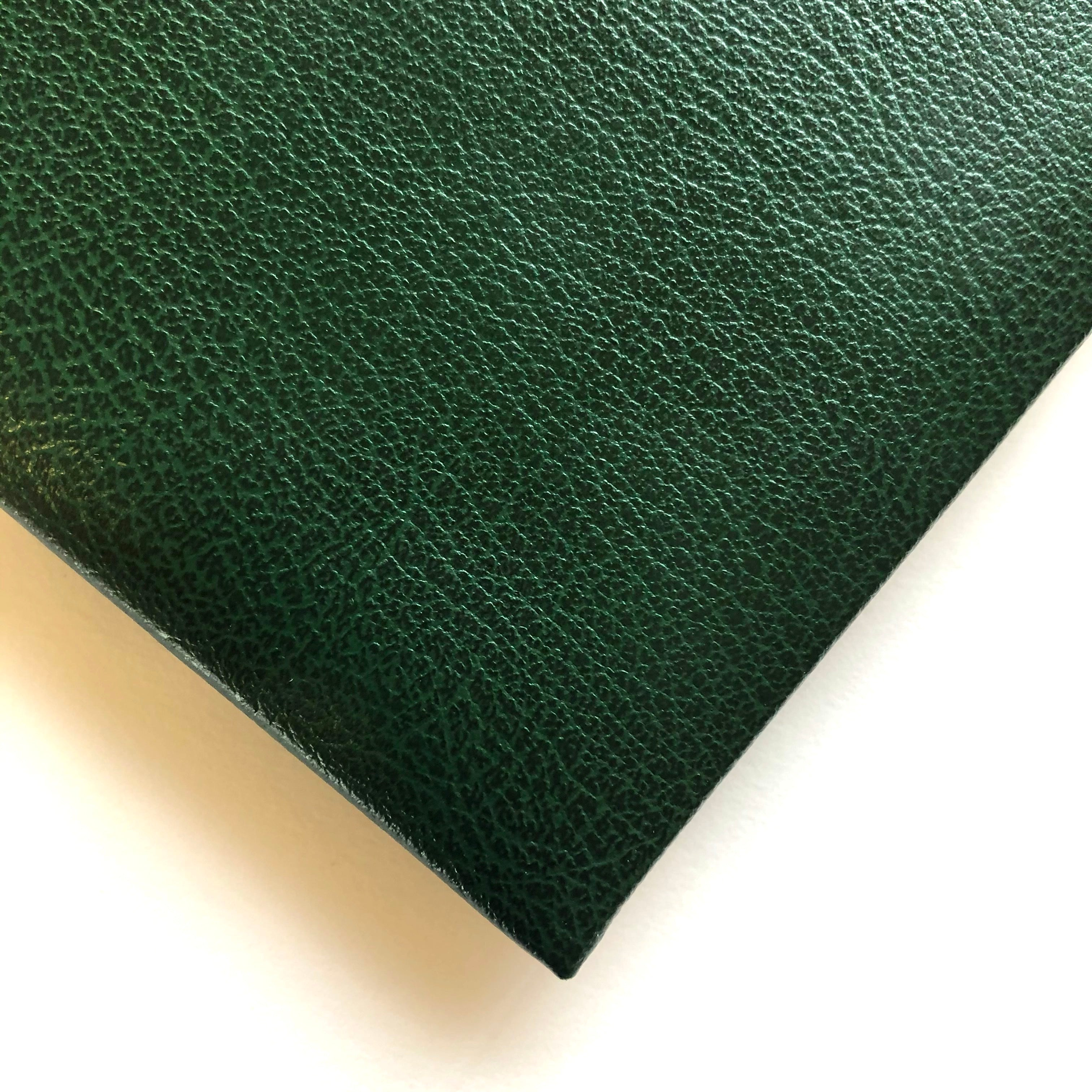 Swatch of Green Leather Visitors Book