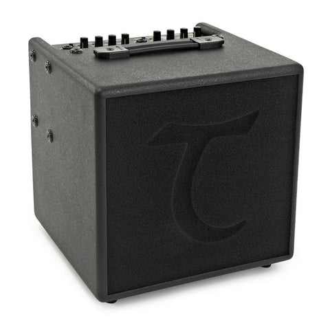 DL Guitars and Accessories - DL Guitars and Accessories Acoustic Amplifiers - Guitar