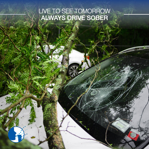 Live to see tomorrow, always drive sober!