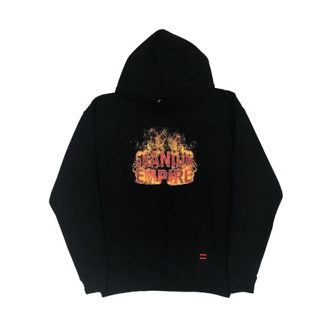 Fire Lion Hoody