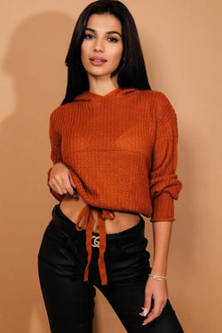 Brown Hooded Cropped Jumper - SinglePrice