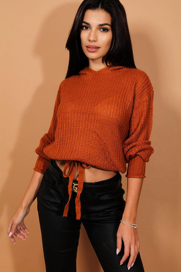 Brown Hooded Cropped Jumper-SinglePrice