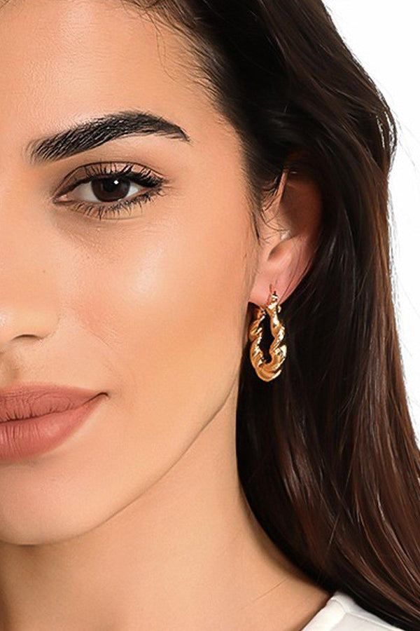 Gold Twisted Hoop Earrings-SinglePrice