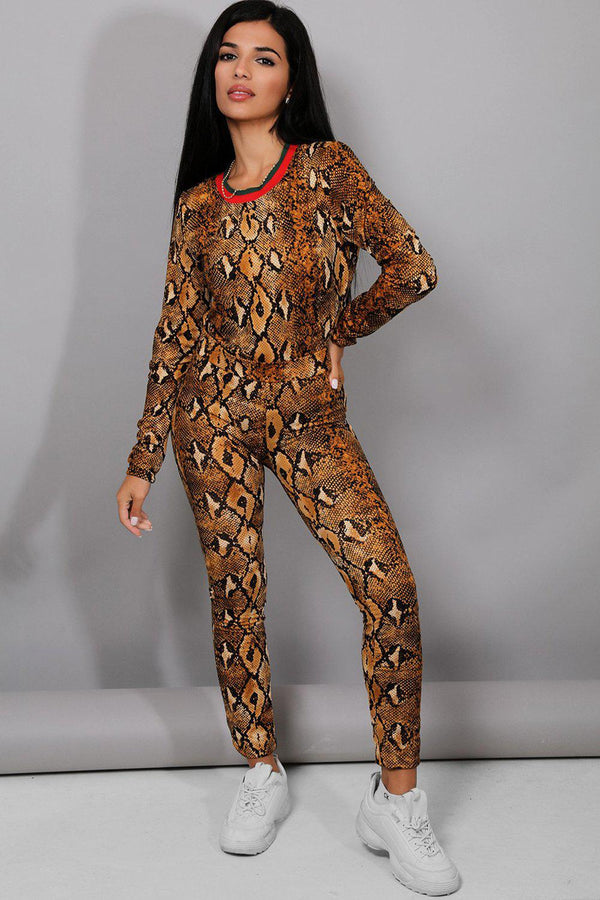 All Brown Snake Print Tracksuit - SinglePrice