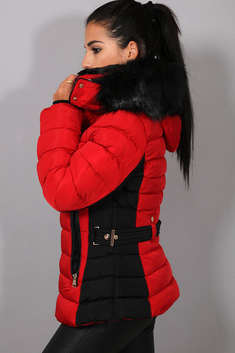 Red Black Belt Detail Quilted Padded Detachable Hood Jacket - SinglePrice