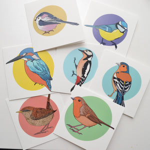 A set of seven digitally illustrated cards featuring British birds with colourful spots behind the birds and white backgrounds.