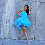 Tule Cool Mini Dress