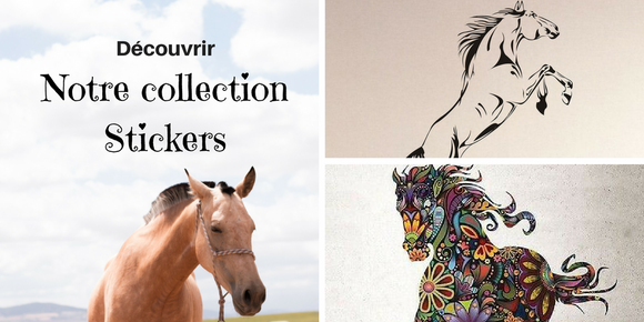 Collection stickers cheval