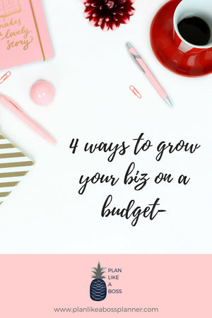 4 Ways To Grow Your Biz On A Budget