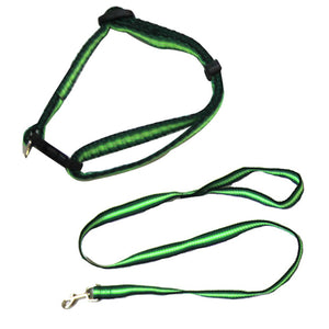 Rainbow Adjustable Collar with Leash - Green - X-Small