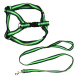 Rainbow Adjustable Harness with Leash - Green - X-Small