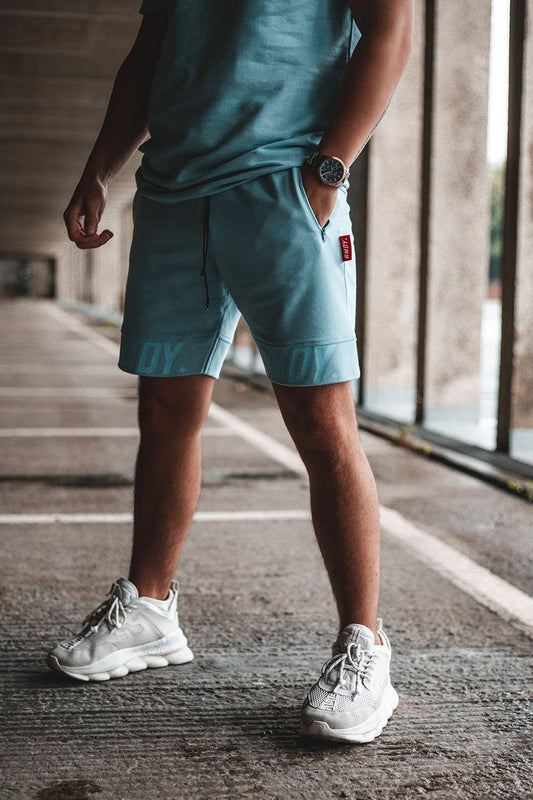 Sky Luxe RMDY. Shorts
